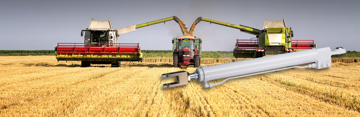 Harvester at the field loading truck